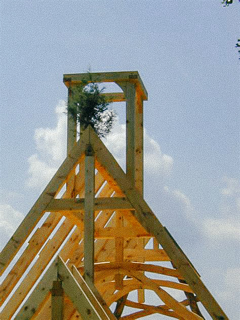 A tree on the top of a frame, indicating it has been Topped Out